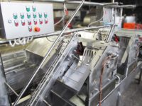 Линии для очистки говяжьих кишок LF-IB