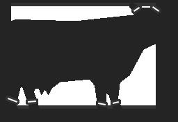 Обработка шерстных субпродуктов КРС