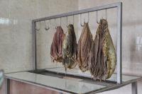 Стол для обработки свиных желудков и пузырей